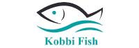tounsi-xyz-web-design-conception-site-web-seo-referencement_digital-marketing_kobbifish