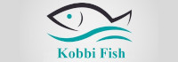 tounsi-xyz-web-design-conception-site-web-seo-referencement_digital-marketing_kobbifish